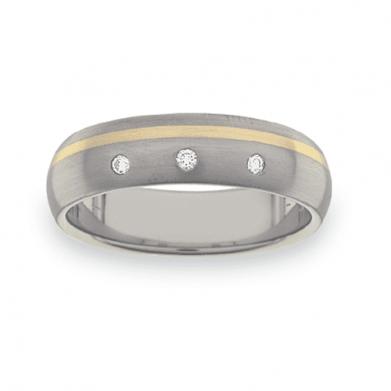 Titanium Wedding Ring PD448