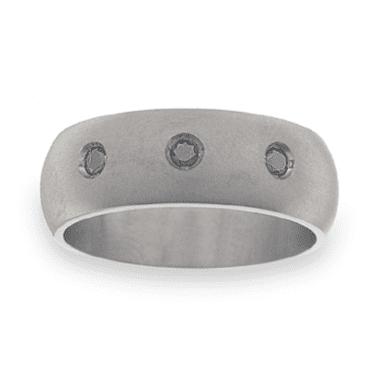 Titanium Wedding Ring PD465