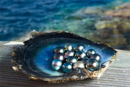 Pearl Gemstone Facts