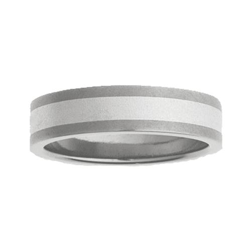Titanium Ring PD211