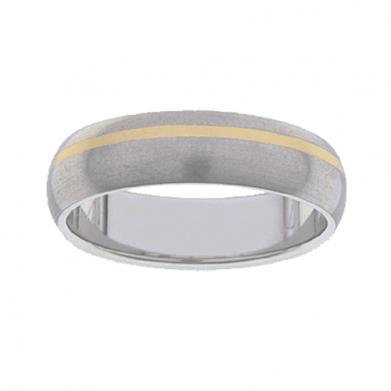 Titanium Ring PD219