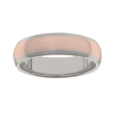 Titanium Ring PD231