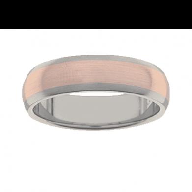 Titanium Ring PD231