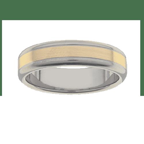 Titanium Ring PD233