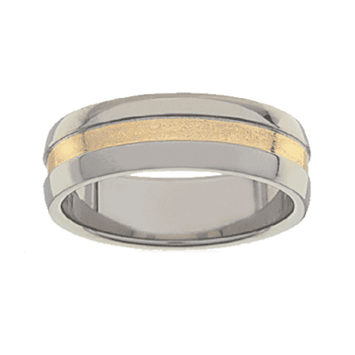 Titanium Ring PD234