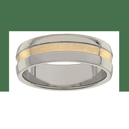 Titanium Ring PD234